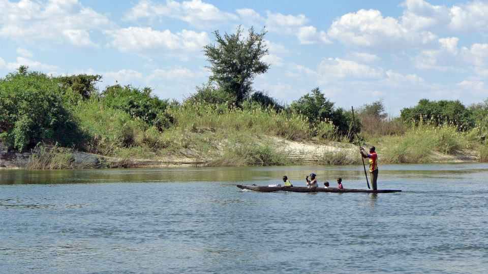 Zambezi river life.
