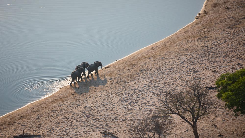 17-nambwa-activities-elephants-at-horseshoe
