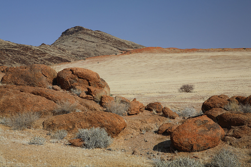 Central Namib. Photo ©NWR