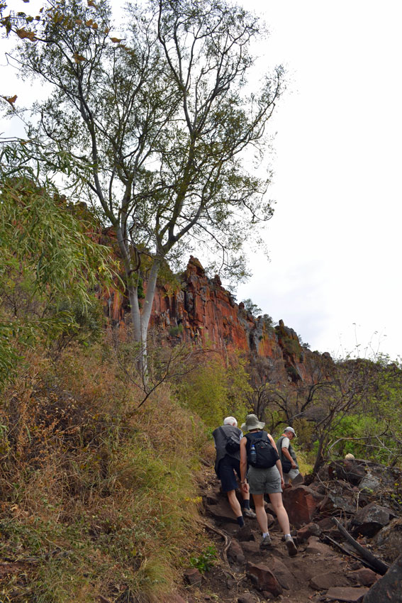 Waterberg hike. Photo ©Ron Swilling