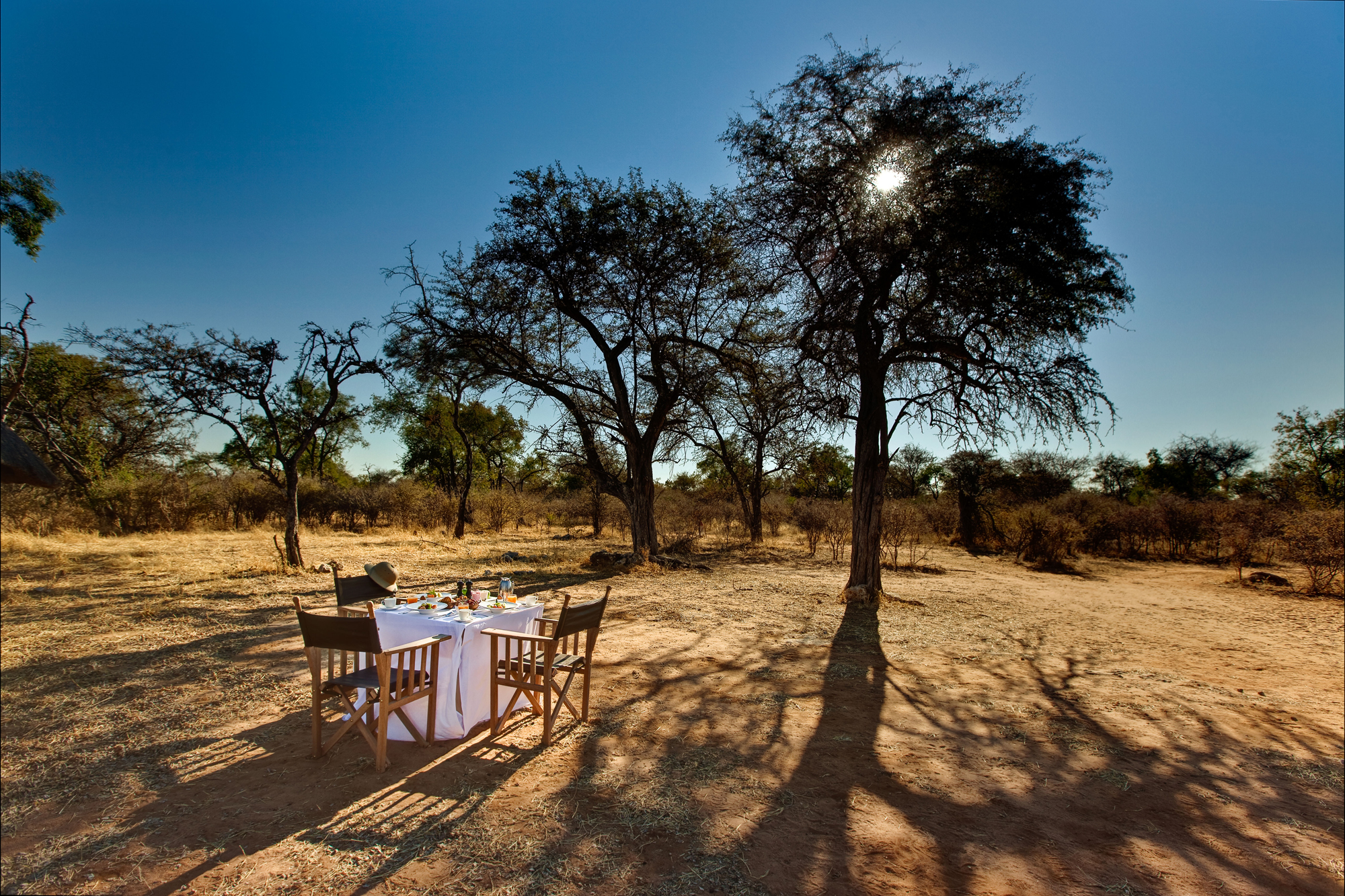 mokuti-etosha-lodge-bush-breakfast