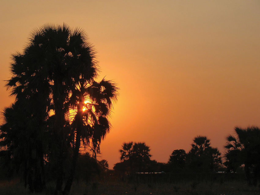 Sunset. Omalunga Palm Route. PHOTO ©Open Africa
