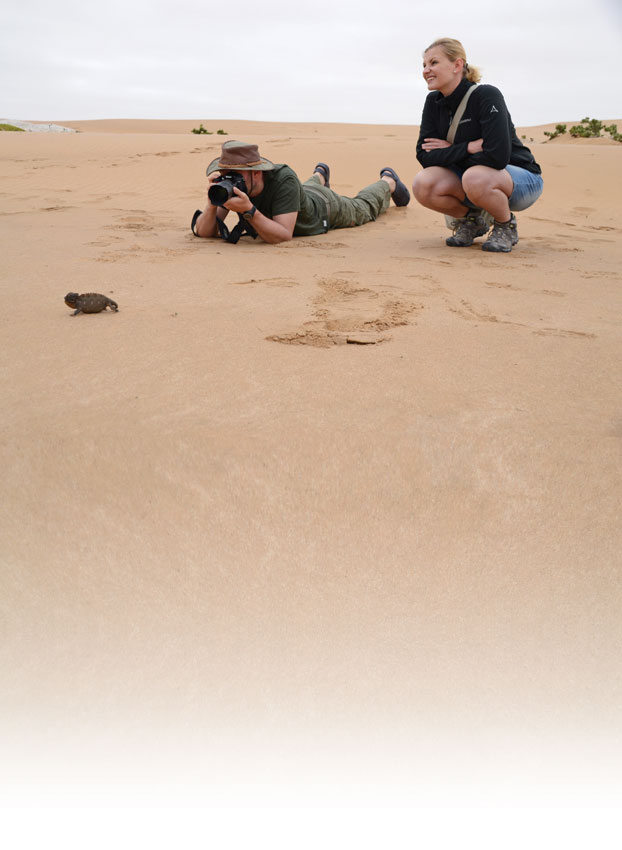 Capturing the little ones in the Namib Desert. ©Ron Swilling