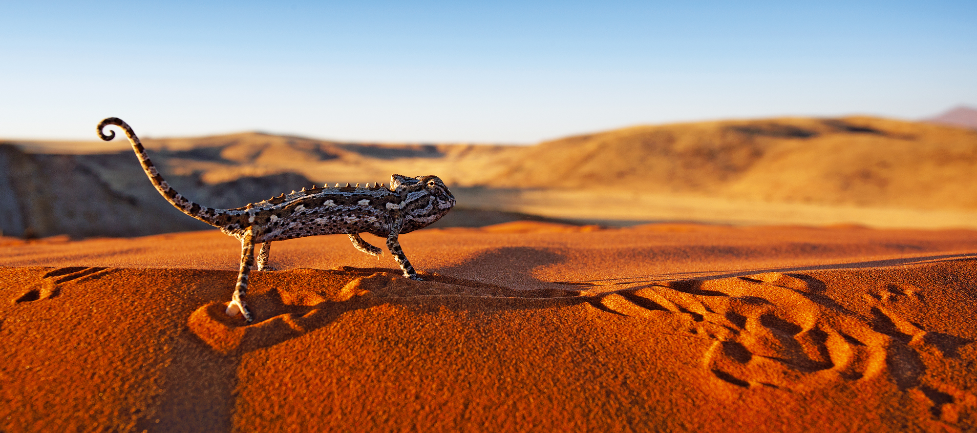 Namibia Panorama - Travel News Namibia