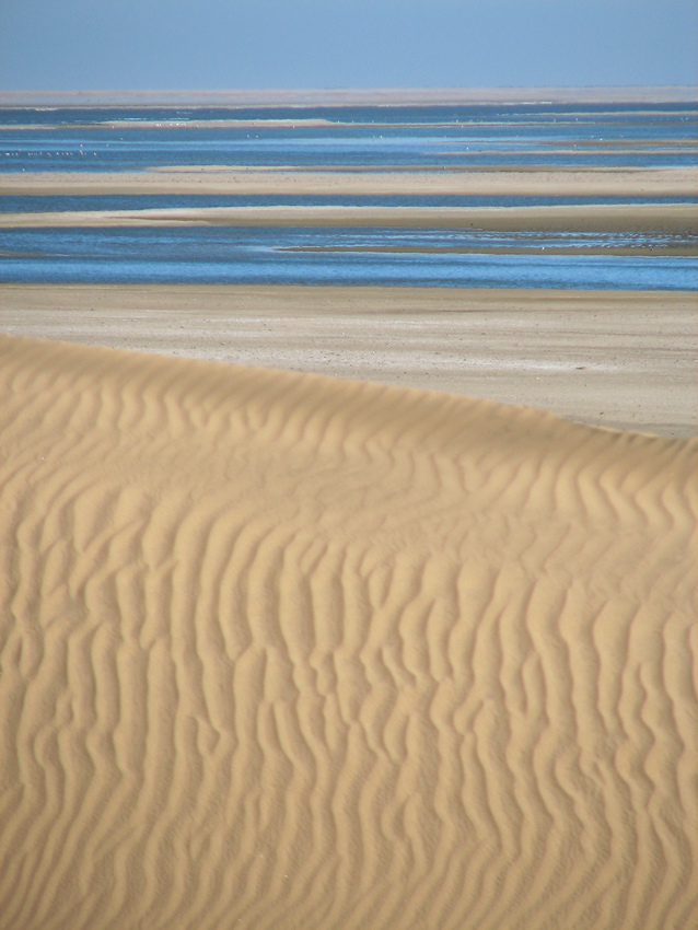 Dunes and water. Photo ©Ron Swilling