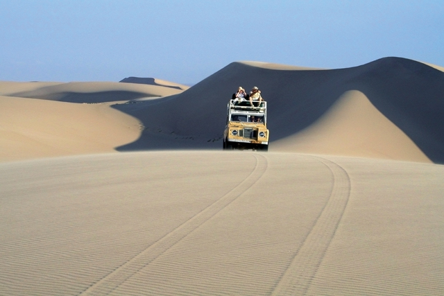 Landy on a sand dune in the Skeleton Coast.