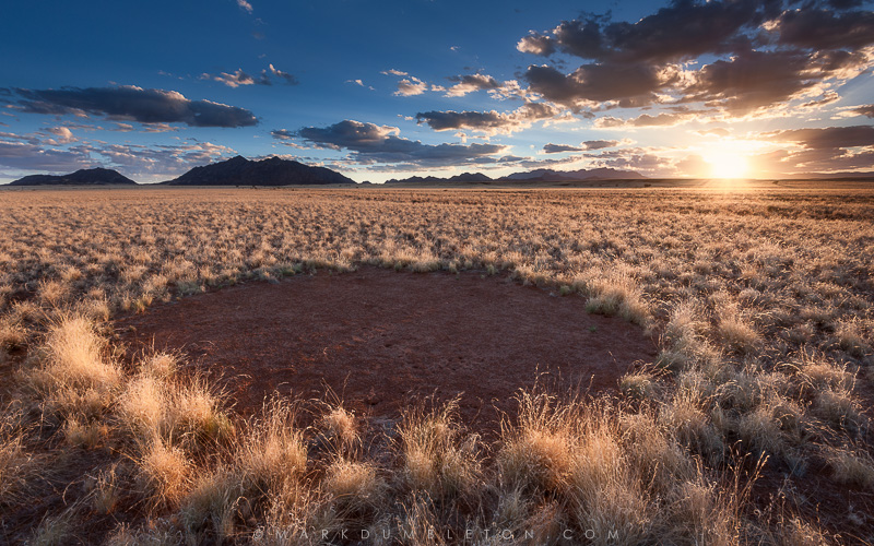 fairy circle Photo ©MARK DUMBLETON PHOTOGRAPHY