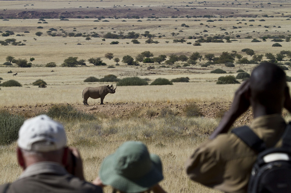 Tracking rhino in north-west Namibia.