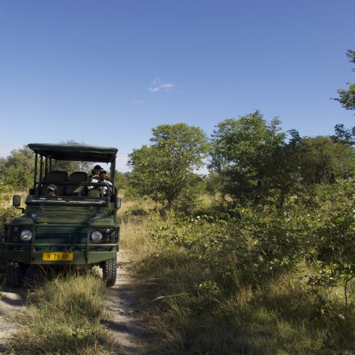 Zambezi paul van schalkwyk safari game drive