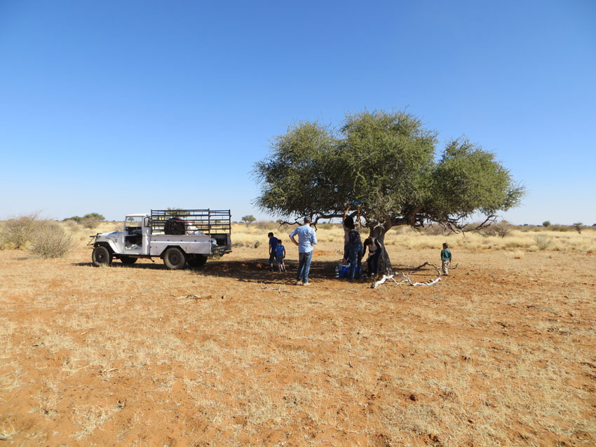 Life on a farm in Namibia.