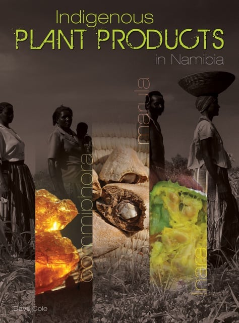 A first for Namibia: Indigenous Plant Products in Namibia book cover.