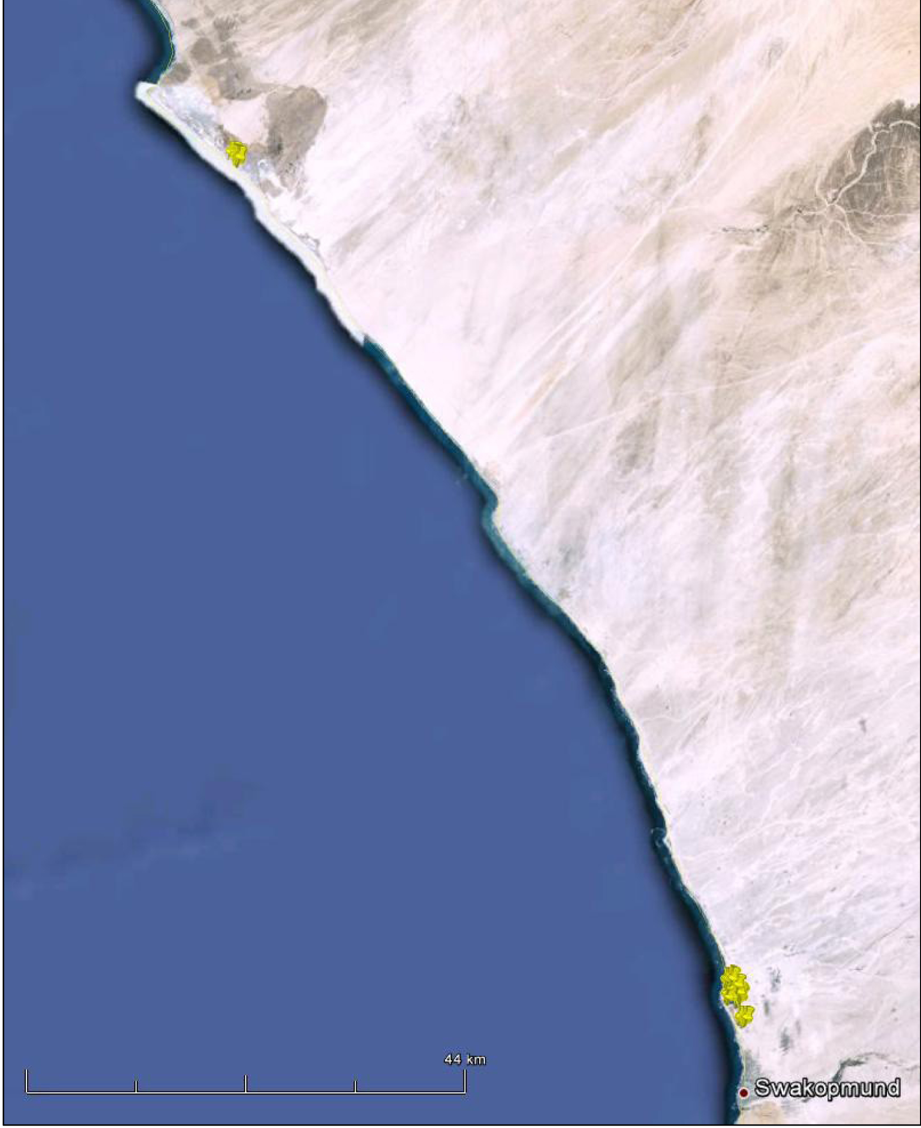 Localities (yellow markers) recorded for a lesser Flamingo (based on a Google map compiled by John Mendelsohn: Raison).