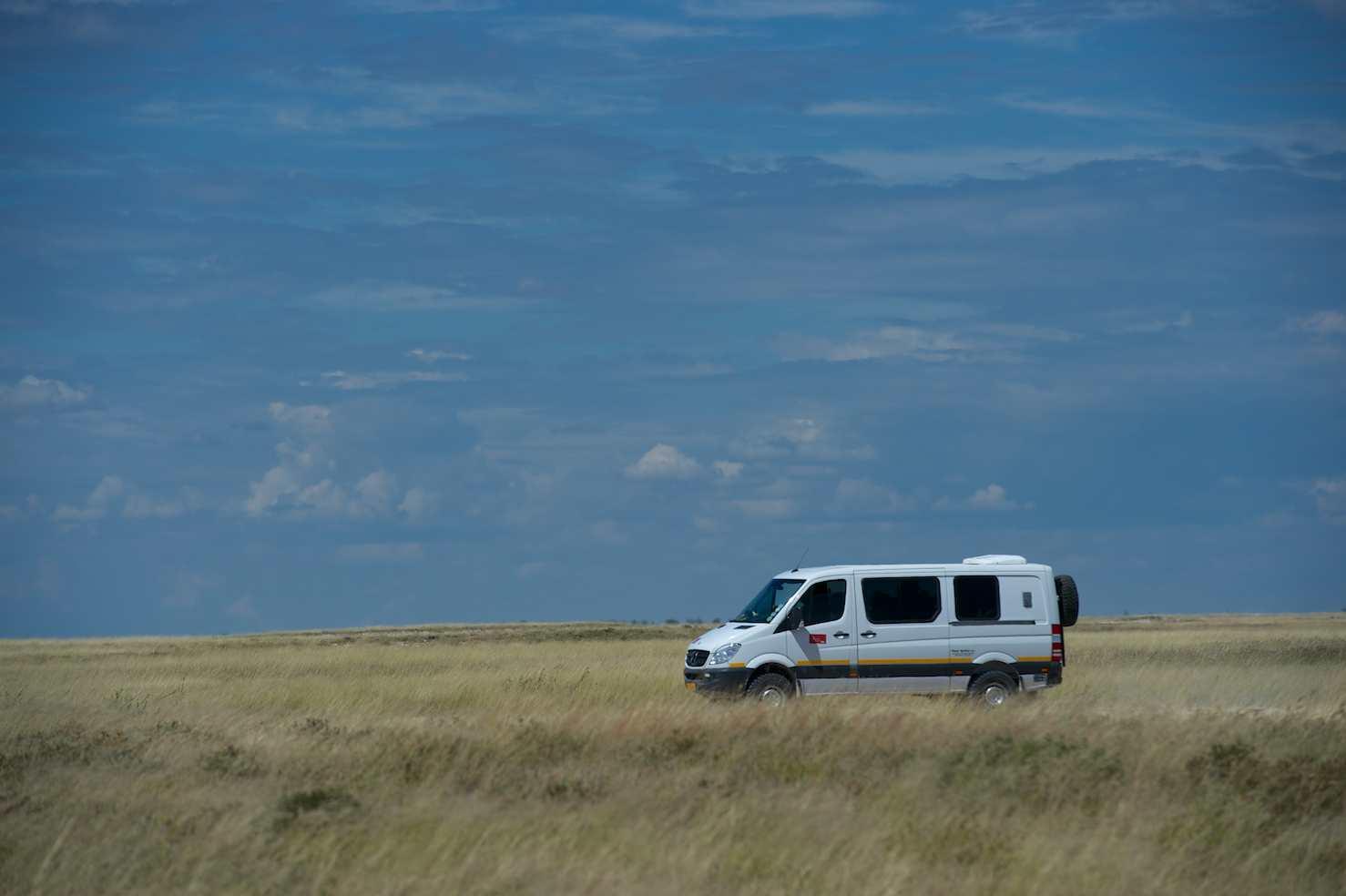 Pack Safaris