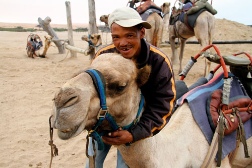 Piet and camel