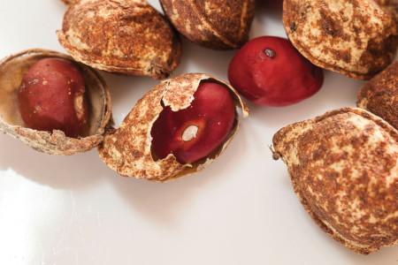 Shelled bambara nuts. Photo ©Christie Keulder