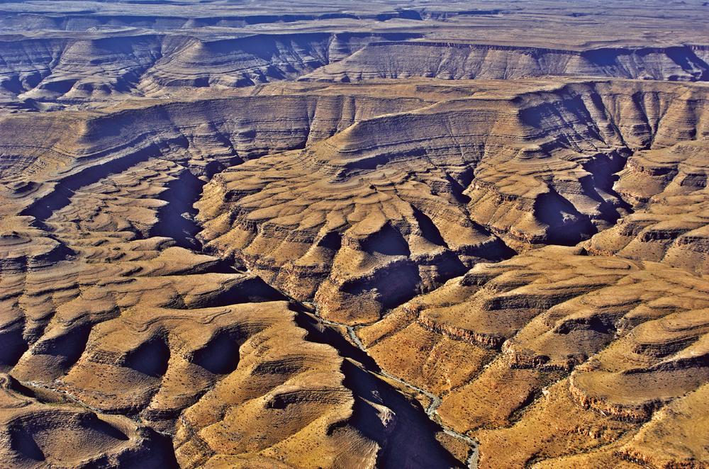 Zebra river. Photo ©Paul van Schalkwyk.