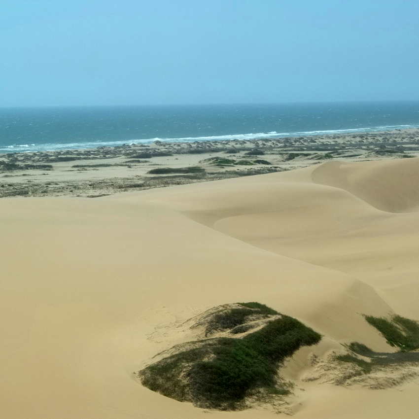 dunes-and-sea-85