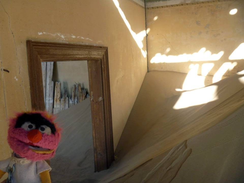 Animal's adventures in Kolmanskop