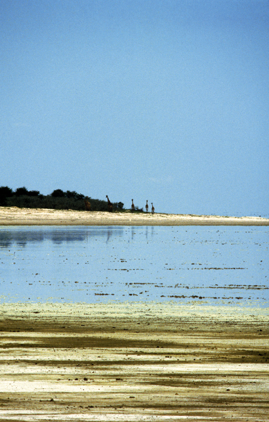 etosha pan with water hu berry