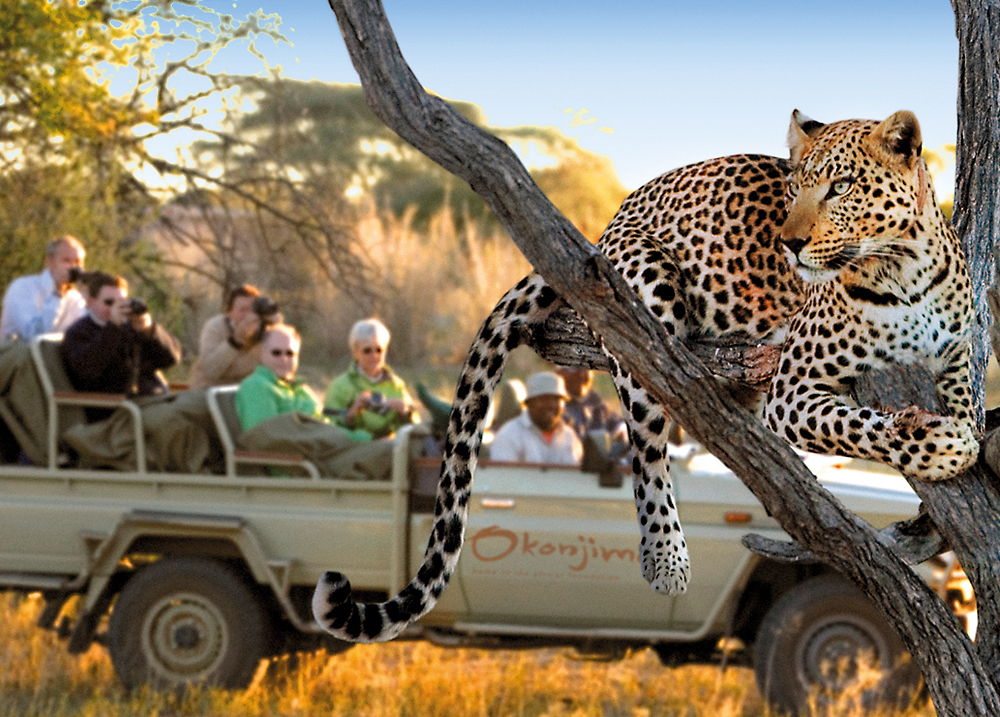 picture_unforgettable-wildlife-experience
