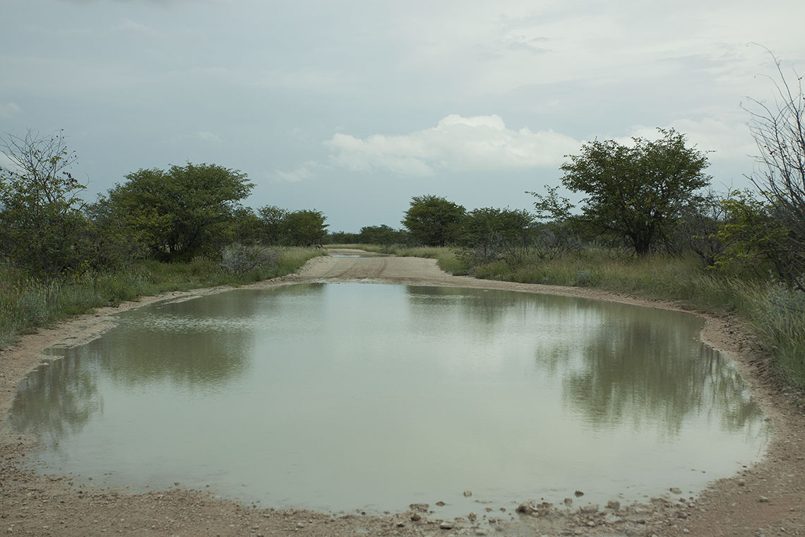 Pools on the Goas-Nuams road in Etosha | Photo ©Annabelle Venter