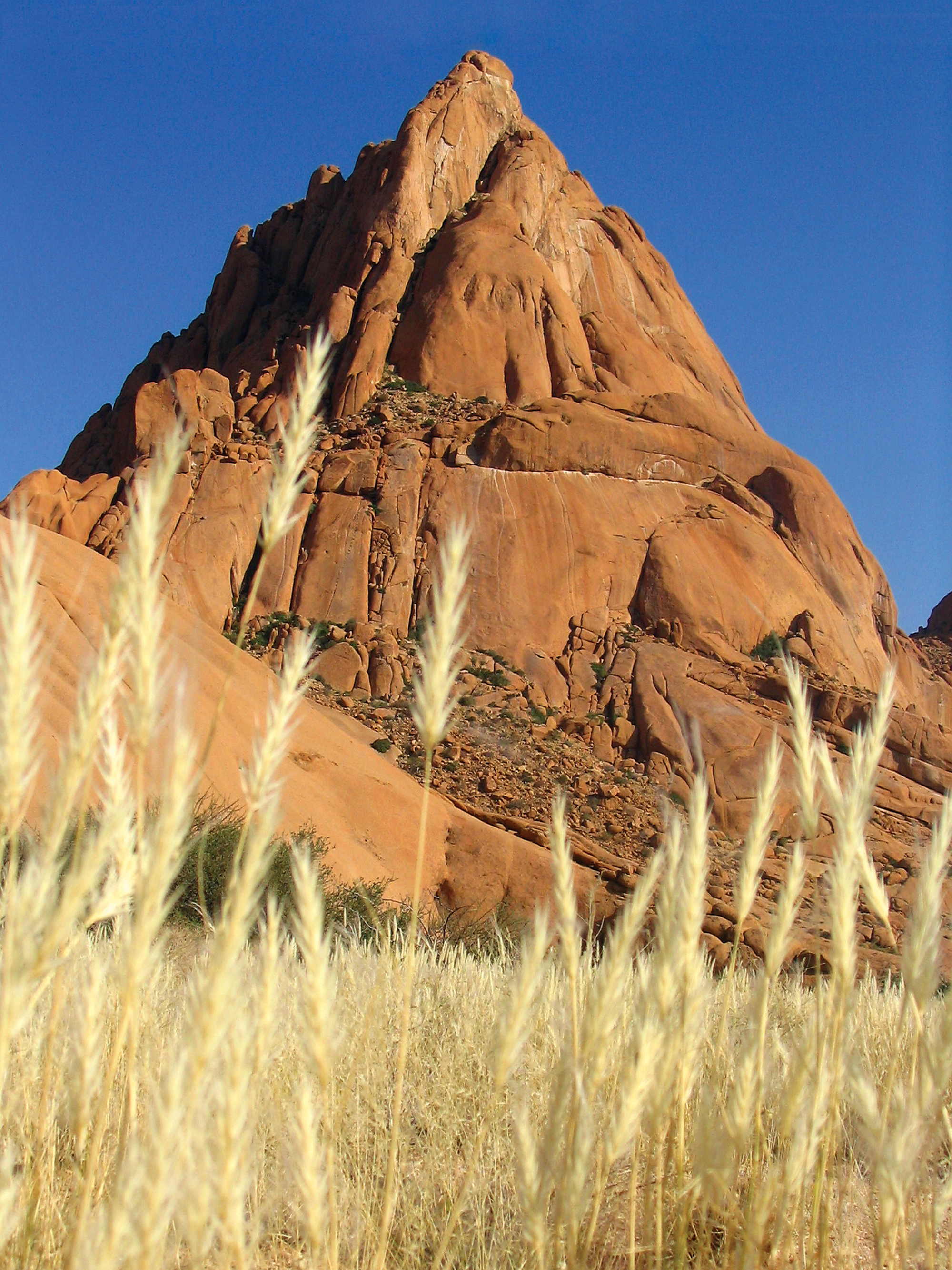 spitzkoppe-and-grass